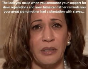 Set An Example And Cough Up Some Of Those Millions: The lookyou make when you announce your support for  slave reparations and your Jamaican father reminds you  your great grandmother had a plantation with slaves... Set An Example And Cough Up Some Of Those Millions