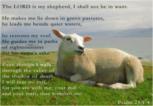 Death, Quiet, and Evil: The LORD is my shepherd, I shall not be in want.  He makes me lie down in green pastures,  he leads me beside quiet waters,  he restores my soul.  He guides me in paths  of righteousness  for his name's sake:  Even though I walk  through  the valley of  the shadow of death,  江.will fear no, evil, f  for you are with me; your rod  and your staff, they comfort.me  Psalm 23:1-4 Never forget these words