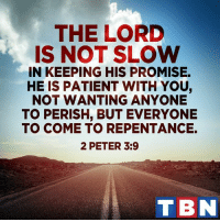Memes, 🤖, and Tbn: THE LORD  IS NOT SLOW  IN KEEPING HIS PROMISE.  HE IS PATIENT WITH YOU,  NOT WANTING ANYONE  TO PERISH, BUT EVERYONE  TO COME TO REPENTANCE.  2 PETER 3:9  TBN God loves us so much!