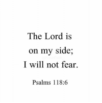 Credit: @saviorfeed: The Lord is  on my side  I will not fear.  Psalms 118 Credit: @saviorfeed