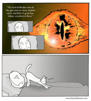 "Memes, Black, and Cloud: ""The lord of Mordor sees all.  His gaze pierces cloud, shadow,  earth, and flesh. A great Eye,  lidless, wreathed in flame.""  70 e  rMe  Meo  www.lunarbaboon.com In honor of the black hole ... www.lunarbaboon.com"