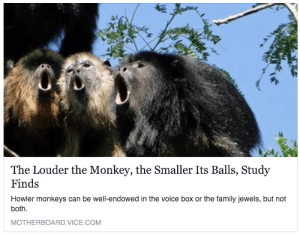 Family, Shit, and Target: The Louder the Monkey, the Smaller Its Balls, Study  Finds  Howler monkeys can be well-endowed in the voice box or the family jewels, but not  both.  MOTHERBOARD.VICE.COM v1als: gothicprep:  at first i thought that Science was a shit waste of time. then somebody did this study,. and now… hooboy.. now i like it  cannot believe my loud car small penis theory now has scientific backing