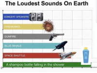 Shower, Blue, and Earth: The Loudest Sounds On Earth  CONCERT SPEAKERS  FIREWORKS  GUNFIRE  BLUE WHALE  SPACE SHUTTLE  A shampoo bottle falling in the shower