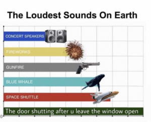 Blue, Earth, and Fireworks: The Loudest Sounds On Earth  CONCERT SPEAKERS  FIREWORKS  GUNFIRE  BLUE WHALE  SPACE SHUTTLE  The door shutting after u leave the window open  0. Scares me everytime