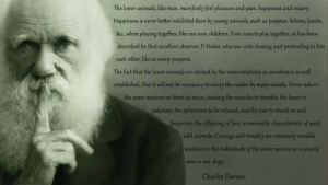 "great-quotes:  ""The lower animals, like man, manifestly feel pleasure and pain, happiness and misery…"" -Charles Darwin [1164x656]MORE COOL QUOTES!: The lower animals, like man, manifestly feel pleasure and pain, happiness and misery.  Happiness is never better exhibited than by young animals, such as puppies, kittens, lambs,  &c., when playing together, like our own children. Even insects play together, as has been  described by that excellent observer, P. Hluber, who saw ants chasing and pretending to bite  each other,like so many puppies  The fact that the lower animals are excited by the same emotions as ourselves is so well  established, that it will not be necessary to weary the reader by many details. Terror acts in  the same manner on them as on us, causing the muscles to tremble, the heart to  palpitate, the sphincters to be relaxed, and the hair to stand on end.  Suspicion, the offspring of fear, is eminently characteristic of most  wild animals. Courage and timidity are extremely variable  qualities in the individuals of the same species, as is plainly  seen in our dogs  Charles Darwin great-quotes:  ""The lower animals, like man, manifestly feel pleasure and pain, happiness and misery…"" -Charles Darwin [1164x656]MORE COOL QUOTES!"