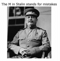 stalin: The M in Stalin stands for mistakes