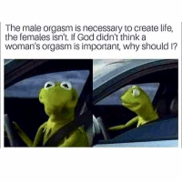 Creating a female orgasm