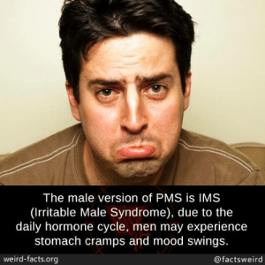 pms: The male version of PMS is IMS  (Irritable Male Syndrome), due to the  daily hormone cycle, men may experience  stomach cramps and mood swings.  weird-facts.org  @factsweird