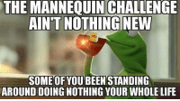 Goodnight. 😂 funnypics funnymemes kermitthefrog mannequinchallenge ghettogenius: THE MANNEQUIN CHALLENGE  AINT NOTHING NEW  SOMEOFYOUBEENSTANDING  AROUND DOING NOTHING YOUR WHOLE LIFE Goodnight. 😂 funnypics funnymemes kermitthefrog mannequinchallenge ghettogenius