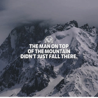 Fall, Goals, and Memes: THE MANONTOP  OF THE MOUNTAIN  DIDN'TJUST FALL THERE. The price of success is hard work. We all want to succeed. Whether it's in losing weight, learning a new skill or start a new business.. For those of us who have tried and failed, success seems elusive. Why is it one person succeeds where another person fails? First and foremost, I believe it is in their mindset. But secondly, I believe that successful people have developed certain habits, either naturally or through research, that the rest of us haven't stumbled upon yet. Though your boy millmentor wants each of you to succeed in everything you do, I can't guarantee success. Only YOU can do that. It starts in your mind, and from there your thoughts take physical form through your actions. Believing in yourself is a necessity! But here's how you can succeed: (Quick and simple) ✔️Identify your core values. ✔️Pick a goal. ✔️Set a deadline for success. ✔️Build the right mindset. ✔️Prioritize. ✔️Make risks. ✔️Never give up. - Good luck! I mean… get your *ss to work because luck doesn't exist! - goals success achieve millionairementor