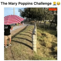 Funny, Mary Poppins, and Challenge: The Mary Poppins Challenge WAIT this what yall doing now?? 🤦🏽‍♂️@thehook marypoppinschallenge