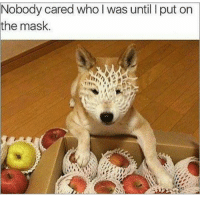 ~Mrs.Doge: the mask  Who was until put on  cared ~Mrs.Doge