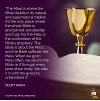 "Taking It In: ""The Mass is where the  Bible dwells in its natural  and supernatural habitat  it's the only place where  the whole Bible is  proclaimed consistently  and fully. For the Mass is  the culmination of the  Bible's prophecy. The  Bible is about the Mass,  and the Bible suffuses the  Mass. When we go to  Mass often, we absorb the  Bible as if through every  pore of our body. We take  it in with the grace to  understand it  SCOTT HAHN  FB.COM/THECATHOLICBIBLEPAGE"