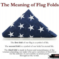 America, Life, and Memes: The Meaning of Flag Folds  The first fold of our flag is a symbol of life.  The second fold is a symbol of our belief in eternal life  The third fold is made in honor and remembrance of the  veterans our ranks who gave a portion of their lives  for the defense of our country to attain peace  throughout the world.  AMERICAN VETERANS americanveterans veterans usveterans usmilitary usarmy supportveterans honorvets usvets america usa patriot uspatriot americanpatriot supportourtroops godblessourtroops ustroops americantroops semperfi military remembereveryonedeployed deployed starsandstripes americanflag usflag respecttheflag marines navy airforce