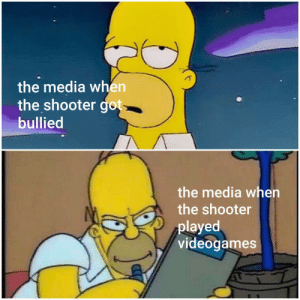 videogames: the media when  the shooter got  bullied  the media when  the shooter  played  videogames