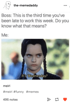 me but with school: the-memedaddy  Boss: This is the third time you've  been late to work this week. Do you  know what that means?  Me:  eStupidRe  It's Wednesday?  meirl  #meirl #funny #memes  495 notes me but with school