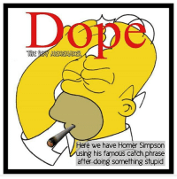 😂😭😏: THE MEMEMAKER  Here we have Homer Simpson  using his famous catch phrase  after doing something stupid 😂😭😏