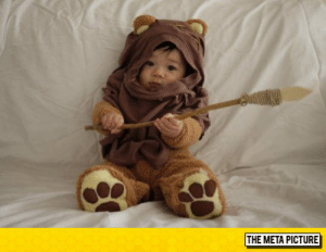 Tumblr, Blog, and Http: THE META PICTURE awesomesthesia:  The Cutest Ewok Ever