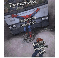 Tumblr, Blog, and Microwave: The microwave  0330  Stopping the  timer a 0:0I  man  Everyone  sleepingat  3AM melonmemes: Bomb disarmed