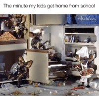 Dank, Home, and Kids: The minute my kids get home from schodol  ot Actual photo.  (via Close to Classy)