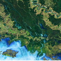 The Mississippi River Delta has been an area of intense study for, among other things, the dynamic growth and loss of land experienced in the region due to natural and man-made causes. Although coastal wetlands are typically the topic of conversation, a recent paper published in the journal Geophysical Research Letters (Ortiz, Roy, & Edmonds, 2017) explores how pond expansion due to wind contributes to land loss, an inland erosion process referred to as 'internal fragmentation.' The scientists analyzed about 10,000 satellite images taken between 1982 and 2016 by the Landsat 8 satellite (a collaboration between the U.S. Geological Survey and NASA launched in 2013), and found that ponds in the area tend to grow in the direction of the prevailing winds. Their research led them to suggest that ponds in the Terrebonne and Barataria basins are unstable, where 80 percent of ponds are expanding. This image shows the area of study along the Atchafalaya Delta of Louisiana, which the authors deemed stable due to the fact that there are nearly as many ponds contracting as expanding. Have you ever visited the Mississippi River Delta region? Tell us your story! Photo: NASA, Joshua Stevens, U.S. Geological Survey. guffscience science geology geography river delta nature erosion earth education naturephotography bestoftheday interesting didyouknow nowyouknow america unitedstates nasa usgs mississippi louisiana mississippiriver mississippiriverdelta: The Mississippi River Delta has been an area of intense study for, among other things, the dynamic growth and loss of land experienced in the region due to natural and man-made causes. Although coastal wetlands are typically the topic of conversation, a recent paper published in the journal Geophysical Research Letters (Ortiz, Roy, & Edmonds, 2017) explores how pond expansion due to wind contributes to land loss, an inland erosion process referred to as 'internal fragmentation.' The scientists analyzed about 10,000 satellite images taken between 1982 and 2016 by the Landsat 8 satellite (a collaboration between the U.S. Geological Survey and NASA launched in 2013), and found that ponds in the area tend to grow in the direction of the prevailing winds. Their research led them to suggest that ponds in the Terrebonne and Barataria basins are unstable, where 80 percent of ponds are expanding. This image shows the area of study along the Atchafalaya Delta of Louisiana, which the authors deemed stable due to the fact that there are nearly as many ponds contracting as expanding. Have you ever visited the Mississippi River Delta region? Tell us your story! Photo: NASA, Joshua Stevens, U.S. Geological Survey. guffscience science geology geography river delta nature erosion earth education naturephotography bestoftheday interesting didyouknow nowyouknow america unitedstates nasa usgs mississippi louisiana mississippiriver mississippiriverdelta