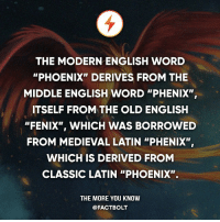 """old english: THE MODERN ENGLISH WORD  """"PHOENIX"""" DERIVES FROM THE  MIDDLE ENGLISH WORD """"PHENIX"""",  ITSELF FROM THE OLD ENGLISH  """"FENIX"""", WHICH WAS BORROWED  FROM MEDIEVAL LATIN """"PHENIX"""",  WHICH IS DERIVED FROM  CLASSIC LATIN """"PHOENIX"""".  THE MORE YOU KNOW  @FACT BOLT"""