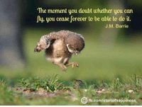 The moment you doubt whether you can  fly, you cease forever to be able to do it.  J M. Barrie  com/start ofhappiness