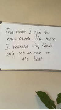 Animals, Memes, and Noah: The more I get to  Know people, the more  Z realize whg Noah  nla let animals on  the boat