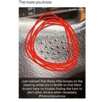 The More You Know, Tumblr, and Blog: The more you know  IG: eTAYVONTAE  Just realised that these little bumps on the  steering wheel are in Braille so that blind  drivers have no trouble finding the horn to  alert other drivers when necessary  memehumor:  Yea… that's what it's for…