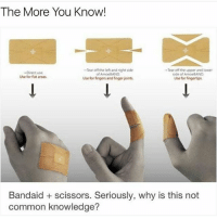 Memes, The More You Know, and 🤖: The More You Know!  Tear off the left and right side  Tear off the upper and lower  Direct use.  of AmoeBAND  side of AmoeBAND  Use for flat areas.  Use for fingers and finger joints.  Use for fingertips.  Bandaid scissors. Seriously, why is this not  common knowledge? Let me know if this came in handy Comment below Tag a Friend Spam @teengirlsquaad_ with likes . . . . . . . . . . . . . . . makeup makeupaddict makeupjunkie 💄 makeupartist makeupforever makeupgeek makeupmafia eyebrowsonfleek eyebrows eyebrowsdid ootd wavyhair