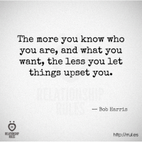 the more you know: The more you know who  you are, and what you  want, the less you let  things upset you.  Bob Harris  RELATIONSHIP  http://rrul.es  RULES