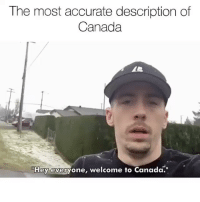 """@sigh is my other account ran by my Canadian friend Ryan, think of him as like my Canadian Ambassador of Memes , he helps me understand Canadian cultures and how they react to memes and he had to explain what poutine was to me and tries to tell me about maple syrup, Justin Bieber and other misc Canadian things. Sometimes there's a language barrier cause I don't speak Canadian but overall he's pretty cool. ( 🎥 - @realdtg ): The most accurate description of  Canada  THey everyone, welcome to Canada."""" @sigh is my other account ran by my Canadian friend Ryan, think of him as like my Canadian Ambassador of Memes , he helps me understand Canadian cultures and how they react to memes and he had to explain what poutine was to me and tries to tell me about maple syrup, Justin Bieber and other misc Canadian things. Sometimes there's a language barrier cause I don't speak Canadian but overall he's pretty cool. ( 🎥 - @realdtg )"""