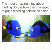 Hairline, Memes, and Finding Dory: The most amazing thing about  Finding Dory is how they managed  to put a receding hairline on a fish Who noticed this?? 😂😂😂