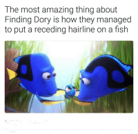 "Hairline, Tumblr, and Finding Dory: The most amazing thing about  Finding Dory is how they managed  to put a receding hairline on a fish <p><a href=""http://ragecomicsbase.com/post/161971821252/i-truly-didnt-notice-anyone-else"" class=""tumblr_blog"">rage-comics-base</a>:</p>  <blockquote><p>I truly didn't notice. Anyone else??</p></blockquote>"