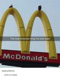 Most Offensive Memes: The most American thing I've ever seen  McDonald's  tastefully offensive:  (photo via rukaba)