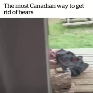 ask-finny: official-sachsen-anhalt:  trapperweasel:   ethanredotter:  trapperweasel: I asked my boyfriend in Canada once, how he deals with polar bears because I was curious about what to do and he was like, just be calm, let them know you're there, and give them space and they'll usually just go away. In Finland on the other hand. https://www.youtube.com/watch?v=z7_pVrIshxA  Lmao Finland Man ain't taking shit from bears.   PERRrrRrrRrKELE  ((Two kinds of people)) : The most Canadian way to get  rid of bears ask-finny: official-sachsen-anhalt:  trapperweasel:   ethanredotter:  trapperweasel: I asked my boyfriend in Canada once, how he deals with polar bears because I was curious about what to do and he was like, just be calm, let them know you're there, and give them space and they'll usually just go away. In Finland on the other hand. https://www.youtube.com/watch?v=z7_pVrIshxA  Lmao Finland Man ain't taking shit from bears.   PERRrrRrrRrKELE  ((Two kinds of people))