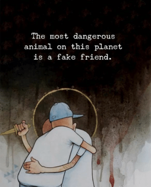 Most Dangerous: The most dangerous  animal on this planet  is a fake friend
