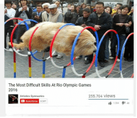 Memes, Game, and Games: The Most Difficult Skills At Rio Olympic Games  2016  255.704 views  Artistics Gymnastics  Suscribirse  8.547  1.564 48 ~Dogreen