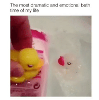 Memes, 🤖, and Bath: The most dramatic and emotional bath  time of my life ⠀ 🌱Who Made This!?!? 😂