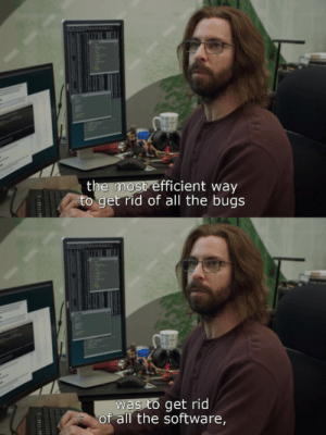 True words indeed: the most efficient way  to get rid of all the bugs  was to get rid  of all the software, True words indeed