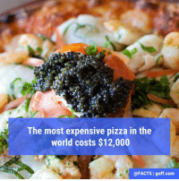 (Or about €11,020!) The pizza is called Louis XIII, and it features three different kinds of caviar, two types of lobster, and seven different cheeses. It also takes 72 hours to prepare.: The most expensive pizza in the  world costs $12,000  @FACTS I guff.com (Or about €11,020!) The pizza is called Louis XIII, and it features three different kinds of caviar, two types of lobster, and seven different cheeses. It also takes 72 hours to prepare.