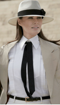 Gorgeous, History, and Flotus