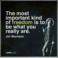 Jim Morrison, Memes, and Mind: The most  important kind  is to  be what you  really are.  Jim Morrison  THE  MIND  UNLEASHED