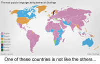 Swedenball can into swedish ^^: The most popularlanguages being learned on Duolingo  English  French  Spanish  German  Swedish  talian  Turkish  Quartz Iqz.com  Data: Duolingo  One of these countries is not like the others.. Swedenball can into swedish ^^