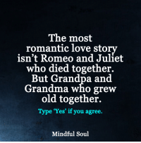Grandma, Memes, and Grandpa: The most  romantic love story  isn't Romeo and Juliet  who died together.  But Grandpa and  Grandma who grew  old together.  Type 'Yes' if you agree  Mindful Soul Growing old together...