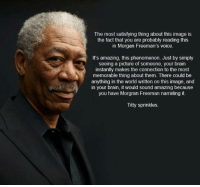 Morgan Freeman, Brain, and Image: The most satisfying thing about this image is  the fact that you are probably reading this  in Morgan Freeman's voice.  It's amazing, this phenomenon. Just by simply  seeing a picture of someone, your brain  instantly makes the connection to the most  memorable thing about them. There could be  anything in the world written on this image, and  in your brain, it would sound amazing because  you have Morgran Freeman narrating it.  Titty sprinkles <p>Morgan Freeman</p>