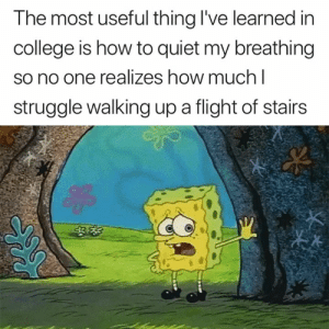 College, Struggle, and True: The most useful thing I've learned in  college is how to quiet my breathing  so no one realizes how much I  struggle walking up a flight of stairs This is so true 😅