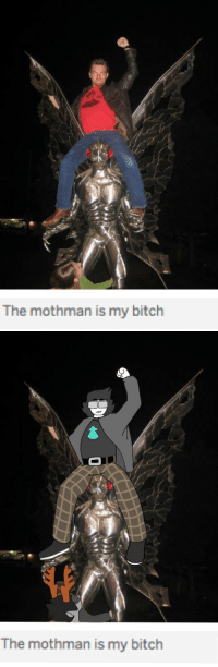 Bitch, Target, and Tumblr: The mothman is my bitch   The mothman is my bitch spacevoicee:this was,, still in my drafts