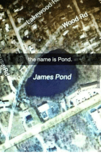 Best name ever?: the name is Pond.  James Pond Best name ever?