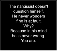 Memes, Narcissist, and Narcissistic: The narcissist doesn't  question himself.  He never wonders  if he is at fault.  Why?  Because in his mind  he is never wrong  You are He or she. The narcissist believes they are never wrong. They accuse you of all the things they are guilty of. #Vixen